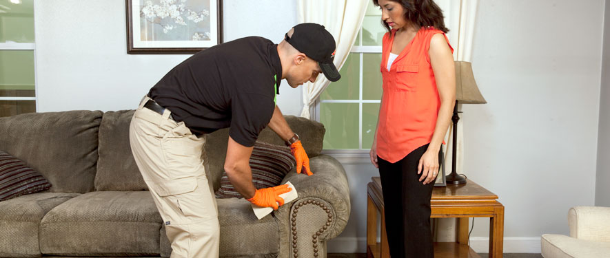 Aurora, IL carpet upholstery cleaning